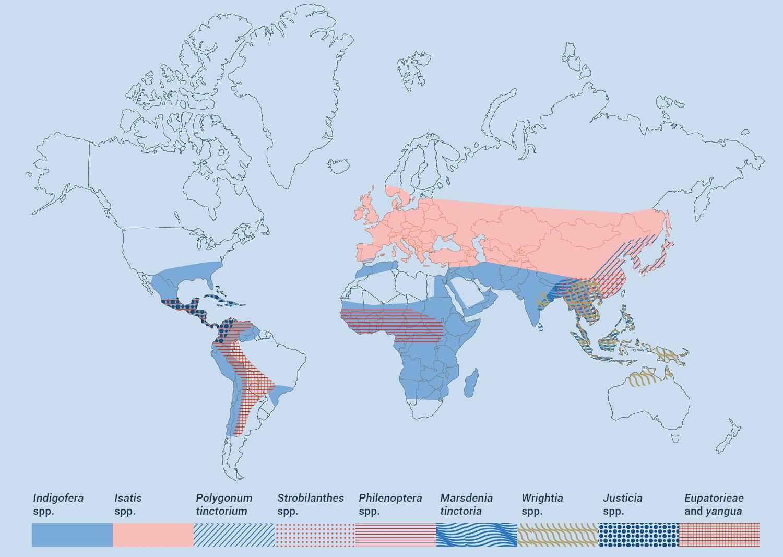Mapa distribución índigo